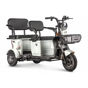 Электротрицикл Rutrike Transformer